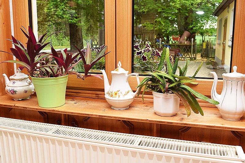 Kaffeekannen als Fensterdekoration.